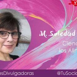 María Soledad Tapia